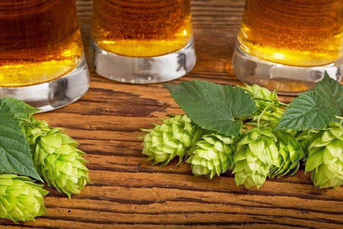 IPA ou India Pale Ale américaines