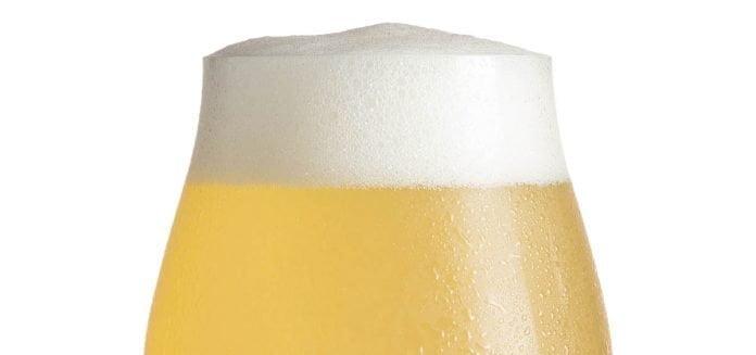 Un verre de bière tulipe remplie de Gose surmontée d'une belle mousse