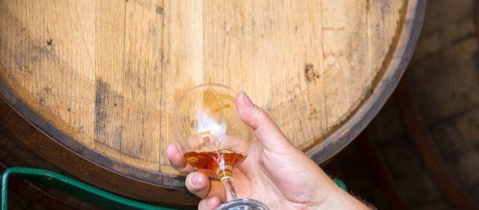 Un verre de cidre puisé directement du baril