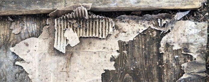 Du vieux carton s'effilochant de planches de bois
