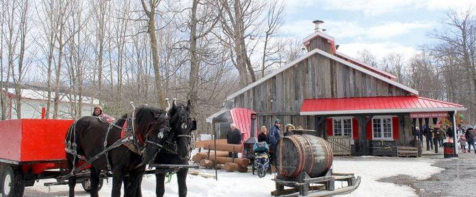 Une cabane à sucre traditionnelle avec une sleigh et des chevaux